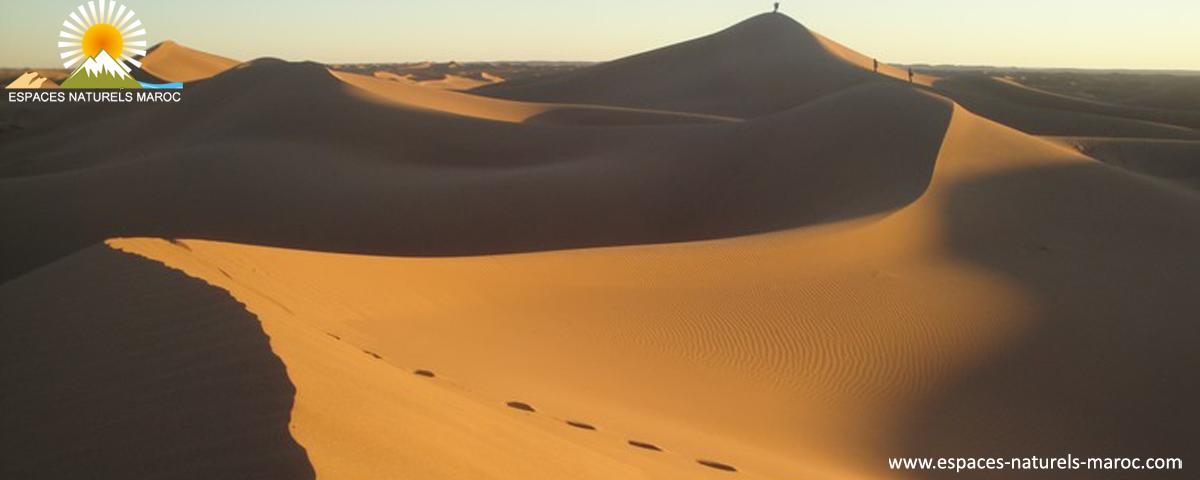 randonnée aux le sud marocaine, la vallée du Dra les dunes du chegaga